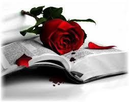 Resultado de imagen de rosa sant jordi libro