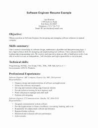 Social Worker Resume Objective Minimalist Amazing Resume Examples