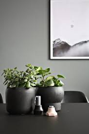 Plant Interior Design Enchanting Urban Jungle Archive DESIGNSETTER Design Lifestyle And Interior