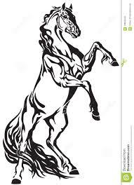 жеребец дикой лошади поднимая вверх иллюстрация вектора