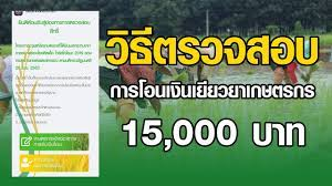 วิธีตรวจสอบการโอนเงินเยียวยาเกษตรกร 15,000 บาท #เยียวยาเกษตรกร - YouTube