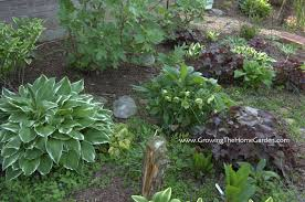 Small Picture Front Garden Design Australia The Garden Inspirations
