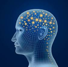 A Neuroscience Approach To Innovative Thinking And Problem