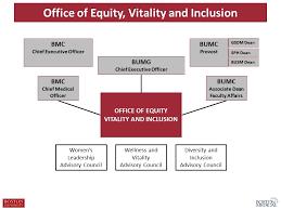 Organizational Structure Boston University Medical Group