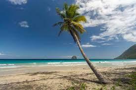 Die schönsten Strände auf Martinique ...