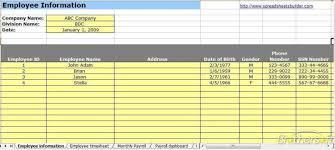 Microsoft Payroll Templates Payroll Template 2 Payroll Template Templates Business