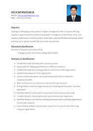 Format Resume Format Sales Executive