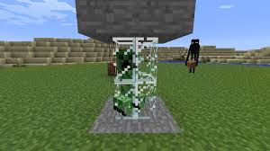 Case Piccole Minecraft : Creeper trophy case stuck in glass box minecraft project