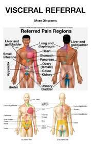 Visceral Pain Referral Snapspt