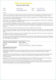 Sap Fico Support Resume Igniteresumes Com