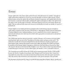 essay on rights twenty hueandi co essay on rights