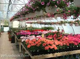 garden centers in maryland. Perfect Maryland Sunny Meadows Garden Center  Boonsboro MD On Centers In Maryland R
