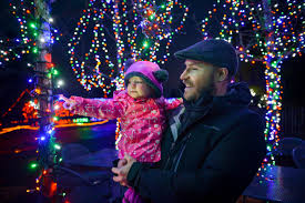 Zoo Lights Seattle Point Defiance Zoo Aquarium Zoolights Fun Family Events