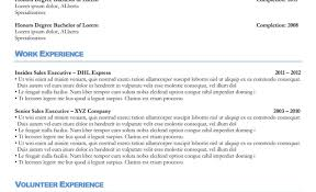 Full Size of Resume:professional Resume Writing Services Eye Catching  Professional Resume Writing Services Ghaziabad ...