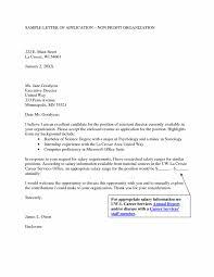 creative nonprofit cover letter