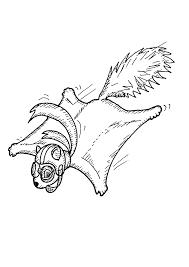Eekhoorntjes Kleurplaten