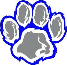 Image result for wildcat logo