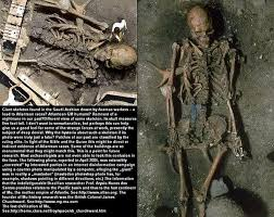real mythical creatures found alive. Brilliant Creatures Giants Humans Inside Real Mythical Creatures Found Alive