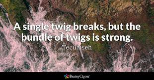 Tecumseh Quotes Magnificent A Single Twig Breaks But The Bundle Of Twigs Is Strong Tecumseh