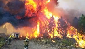 Incendios en Chubut: apuntan a una agrupación mapuche - Noticias - Cadena 3  Argentina