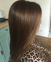 Light Chocolate Brown Hair Color Pictures Chocolate Golden Brown Hair With Naturally Hand Painted