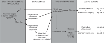 Logic Chart Of The Method Of Coding Ontogeny Parameters