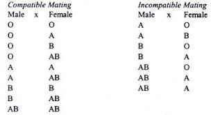 Blood Compatibility Chart For Marriage Traits Of Human Heredity Which Varies Between Individuals