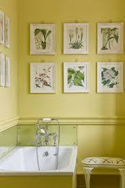 bathroom paint yellow. light yellow bathroom paint - design ideas pictures \u0026 designs h