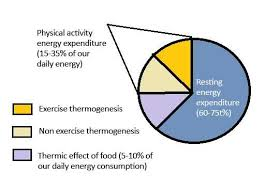 Energy Expenditure Chart For Activity