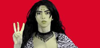 Image result for youtube shooter