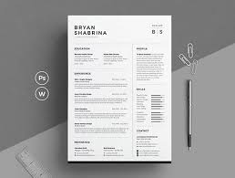 Resume Template 2017 Interesting Best Of 60 Stylish Professional CV Resume Templates