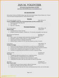 Exceptional Resume Examples Hairstyles Basic Resume Examples Exceptional Internship