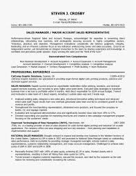 27 Sales Manager Resume Templates Word Professional Best Resume