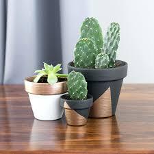 painted plant pots painting plastic flower ideas