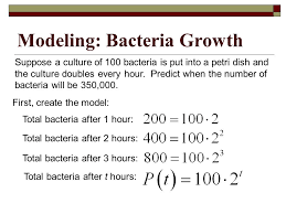 bacterial growth equation jennarocca