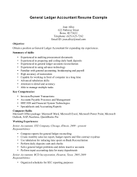 General Ledger Accountant Resume Example Page The Nature Being
