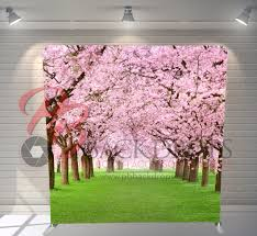 Cherry Blossom Backdrop Single Sided Pillow Cover Backdrop Cherry Blossoms