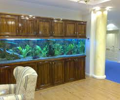 aquarium furniture design. Fullsize Of Outstanding Canopies Aquarium Furniture New Custom Aquariums Furniturecustom To Design