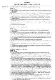Manager Marketing Strategy Resume Samples Velvet Jobs