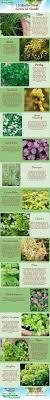 Kitchen Garden Preserves 17 Best Images About Growing Herbs On Pinterest Gardens