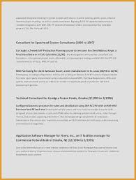 It Professional Summary Examples Awesome Customer Service Resume Skills Resume Skills For Customer Service