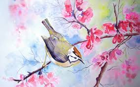 bird tree watercolor flowers blossoms wallpaper