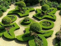 Small Picture Geometric Knot Garden With Boxwood Plants Impressive Knot Garden