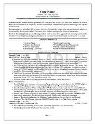 Sales Summary Resume Summary On A Resume Example Best Resume