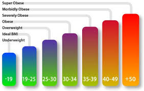 Risk Of Obesity Charts And Posters Hubpages