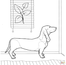 Daschund Coloring Page For Dachshund Coloring Pages Coloring Pages