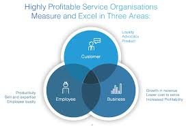 areas of expertise for customer service the triple bottom line and high performing service