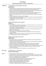 Sample It Project Manager Resumes Project Management Manager Resume Samples Velvet Jobs