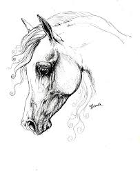 Arabian Horse Coloring Pages