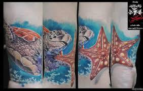 черепаха и морская звезда добавлено дмитрий хлиханов